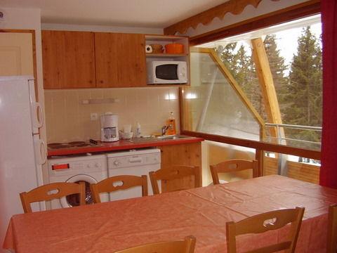 Kitchenette Location Apartment 30487 Chamrousse