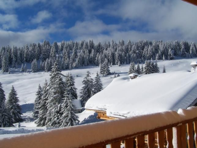 View from terrace Location Chalet 51561 Les Saisies