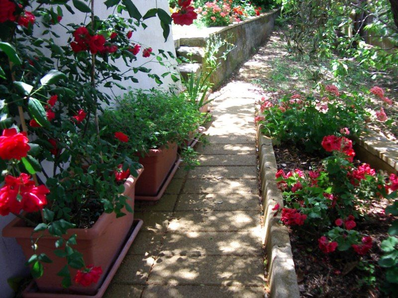 Garden Location Villa 54358 Capo d'Orlando