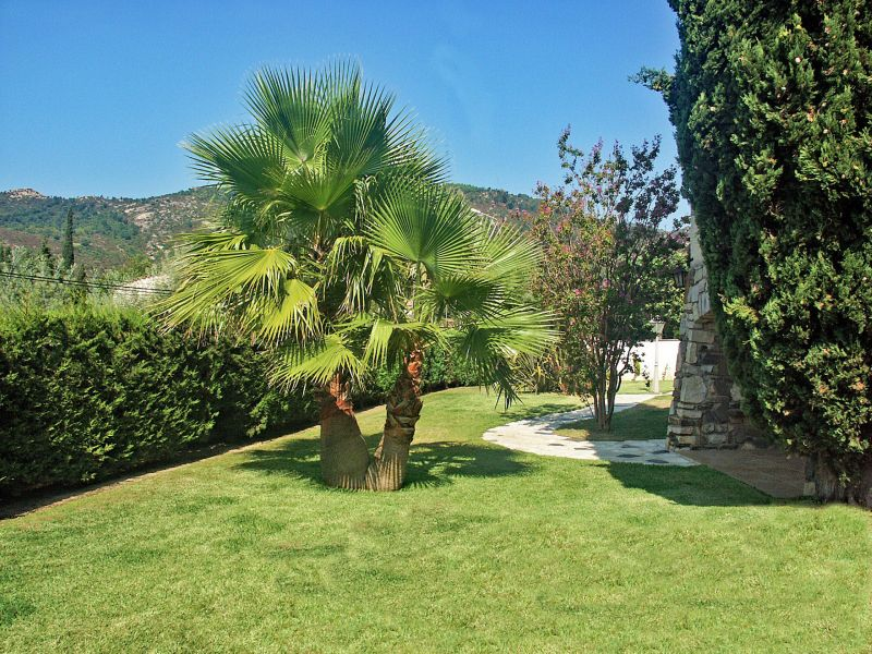 Garden Location Villa 109162 Saint Tropez