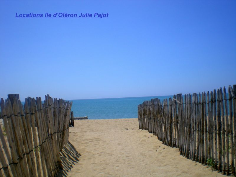 Beach Location Apartment 64451 La Cotinière