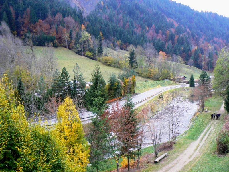 View from the balcony Location Apartment 66537 Le Grand Bornand