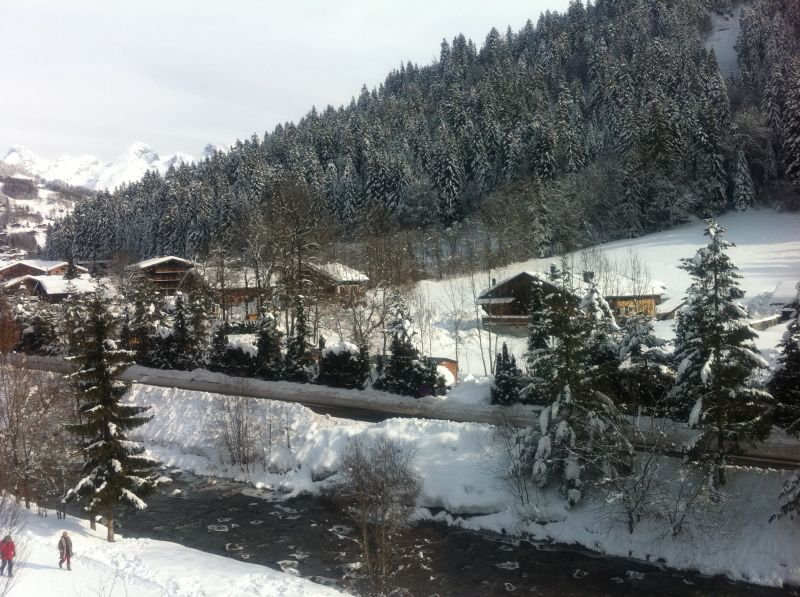 View from the property Location Apartment 66537 Le Grand Bornand