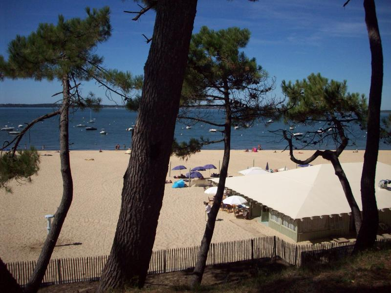 Surroundings Location Apartment 75728 Arcachon