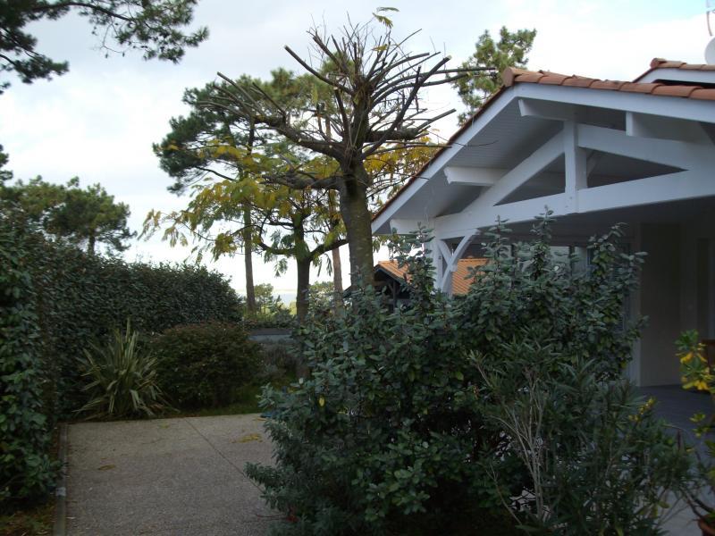 Location House 83818 Arcachon