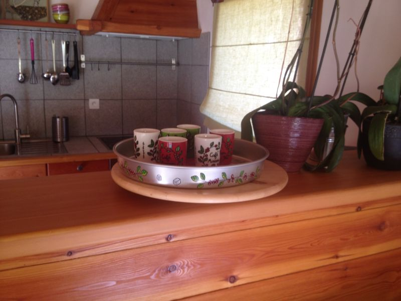 Open-plan kitchen Location Apartment 100869 Montgenevre