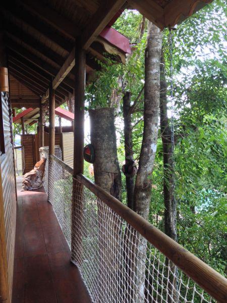 Corridor Location Tree-house 83872 Bouillante