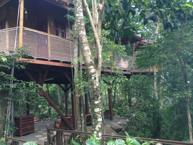 Outside view Location Tree-house 83872 Bouillante
