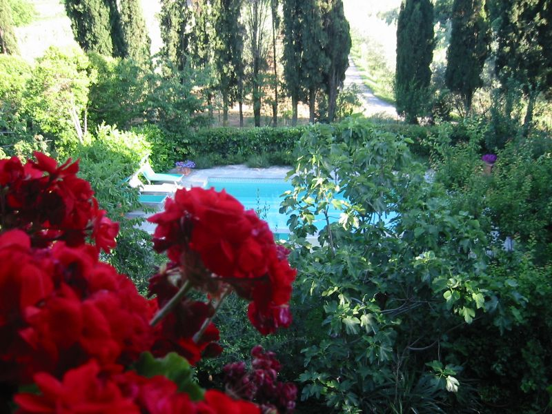 Swimming pool Location Villa 11865 Arezzo