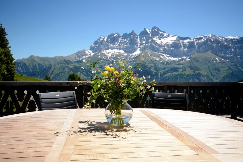 View from terrace Location Chalet 14794 Les Crosets