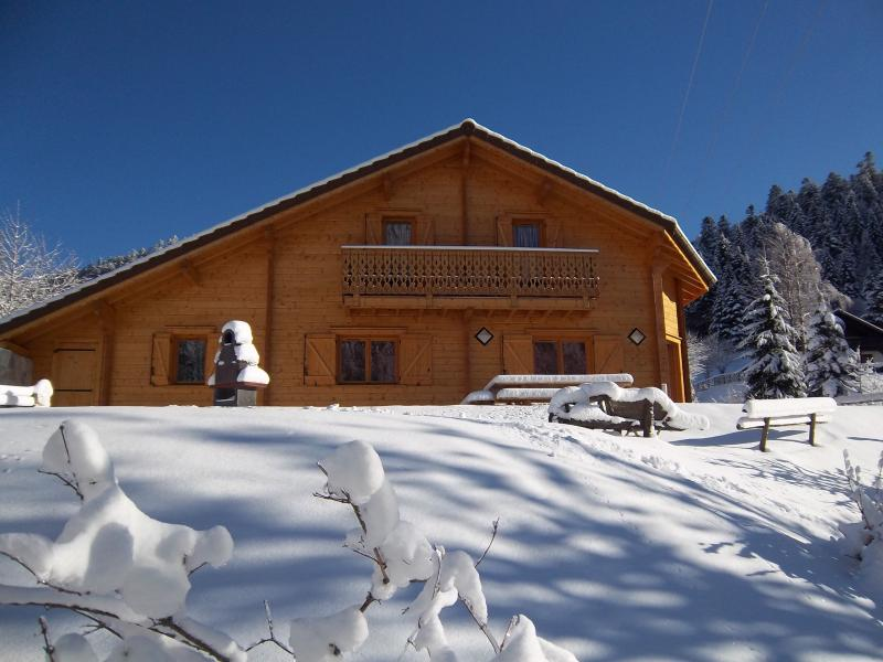 Outside view Location Chalet 15350 La Bresse Hohneck