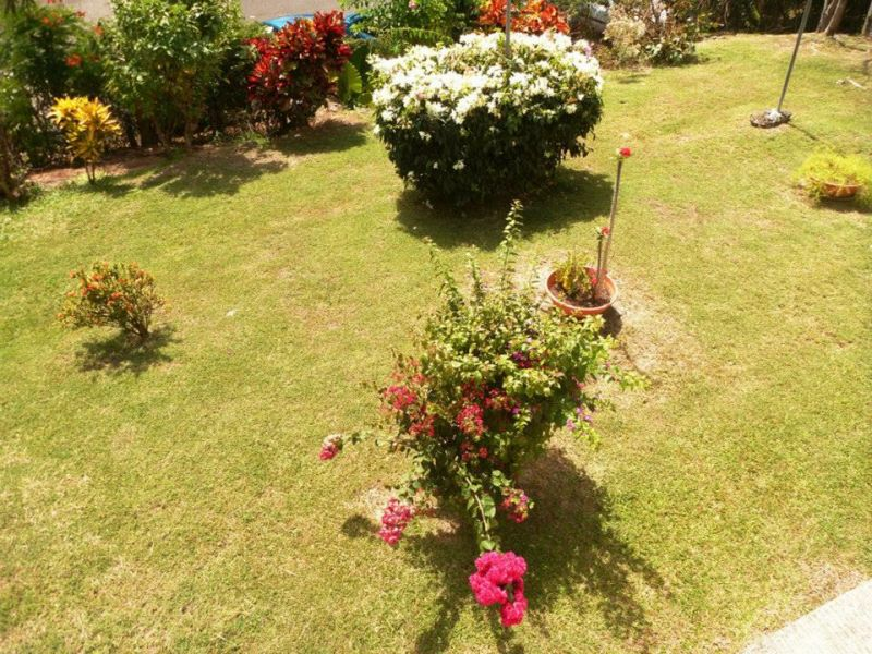 Garden Location Apartment 25506 Gosier (Guadeloupe)
