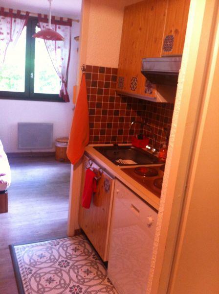 Kitchenette Location Studio apartment 27715 Les Carroz d'Araches