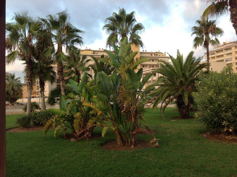 Garden Location Apartment 32523 Peñíscola