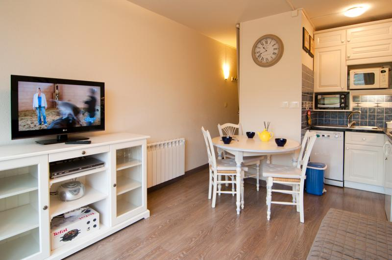 Location Studio apartment 3965 Arette La Pierre Saint Martin