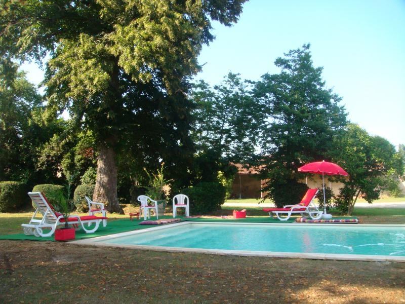 Swimming pool Location House 43881 Bordeaux