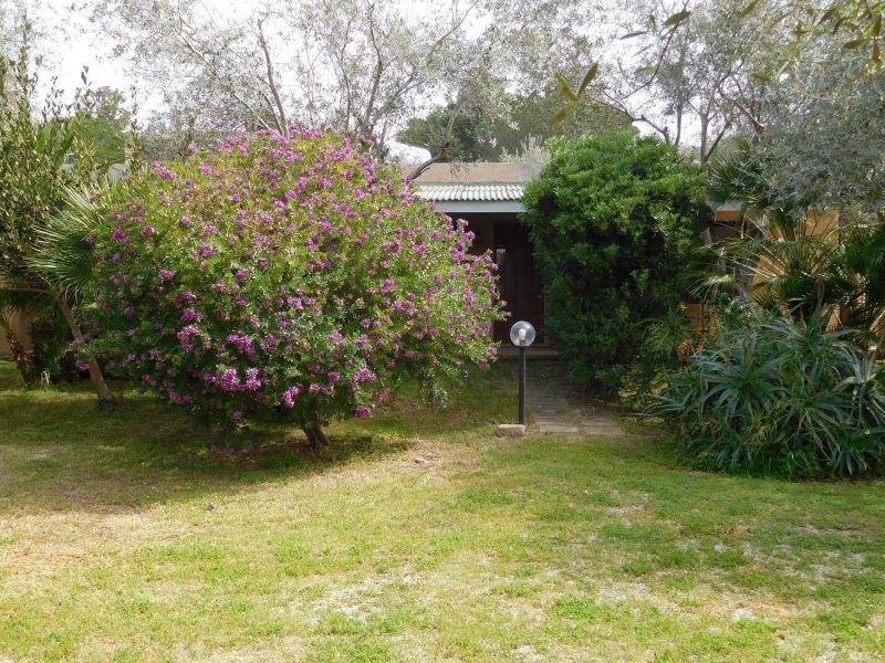 Garden Location Apartment 45136 Alghero