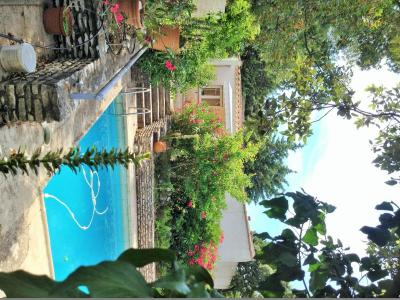 Location House 48095 Cassis