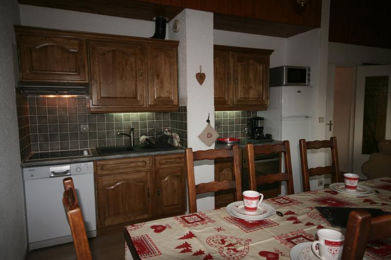 Kitchenette Location Apartment 50609 Alpe d'Huez