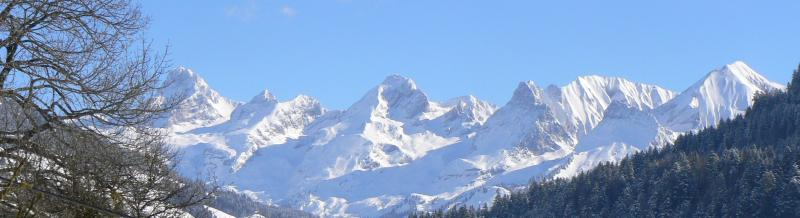 View from terrace Location Apartment 52301 Le Grand Bornand