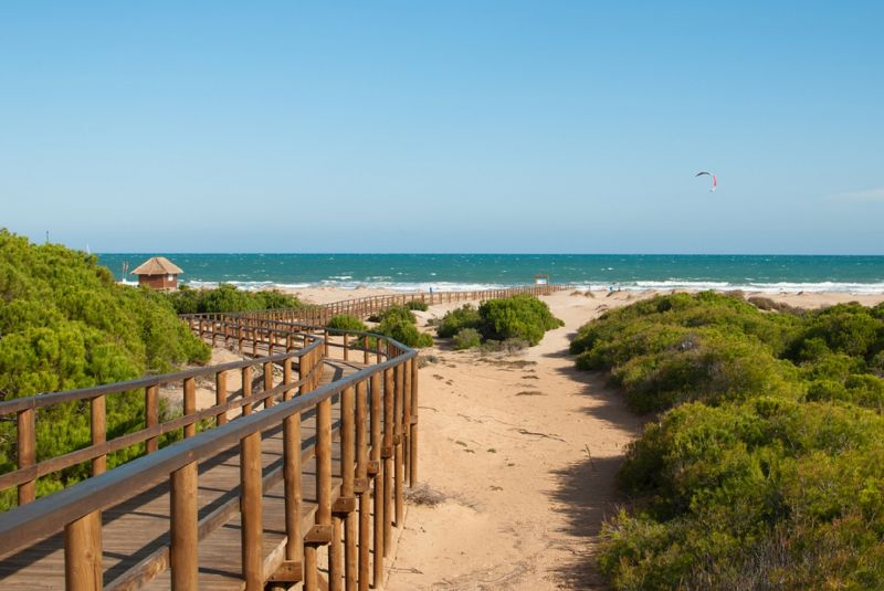 Beach Location Apartment 56526 Santa Pola