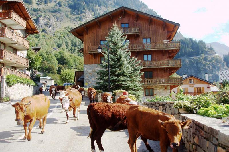 Outside view Location Chalet 577 Champagny en Vanoise