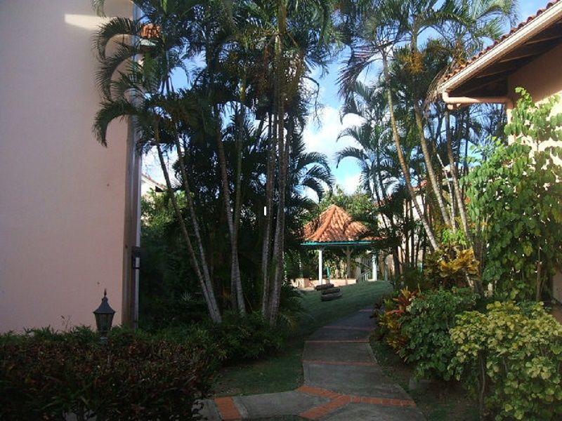 Garden Location Apartment 58877 Sainte Anne (Martinique)