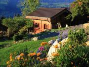 Chalet Chamonix Mont-Blanc 5 people
