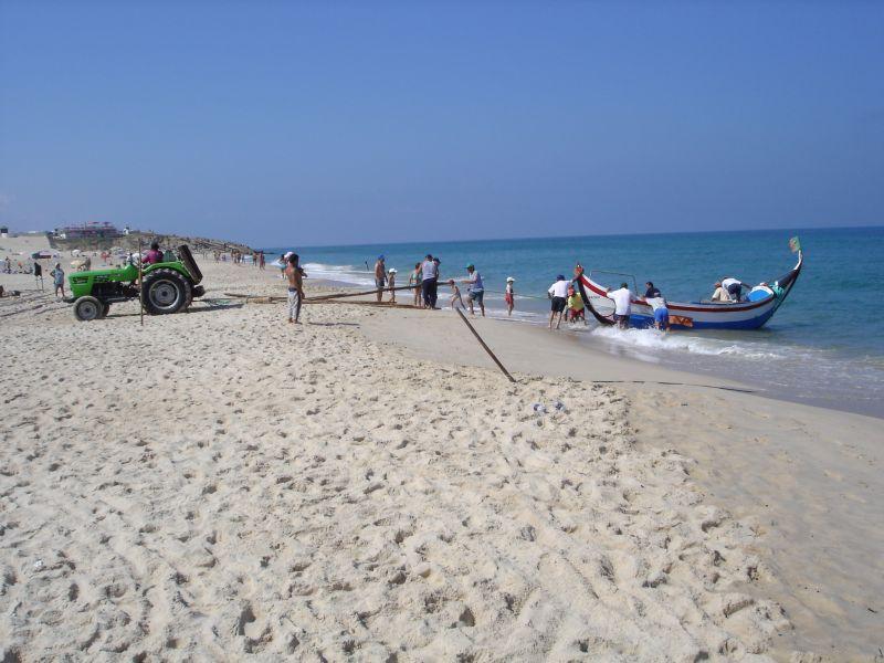 Beach Location Apartment 105715 Figueira da Foz