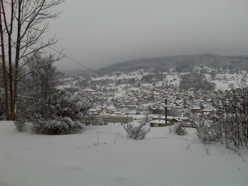 View from the property Location Apartment 72177 Gérardmer