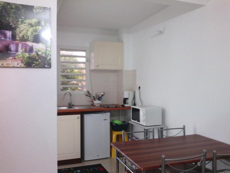 Kitchenette Location Studio apartment 74882 Port Louis