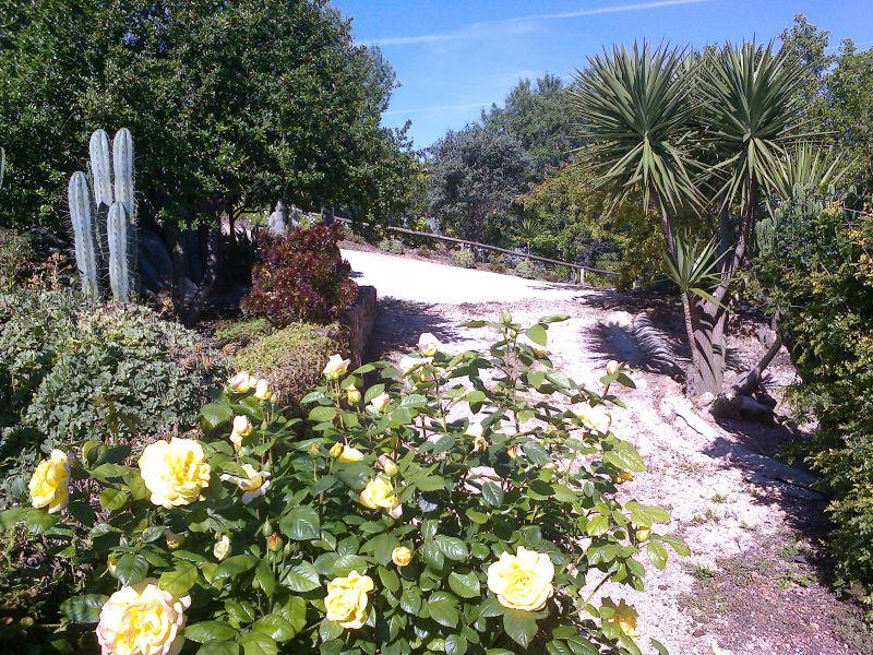 Garden Location Offbeat accommodation 96338 Loulé