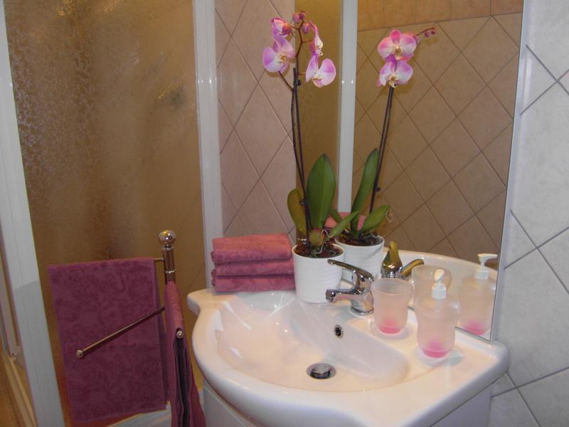 bathroom Location Apartment 69902 Rome