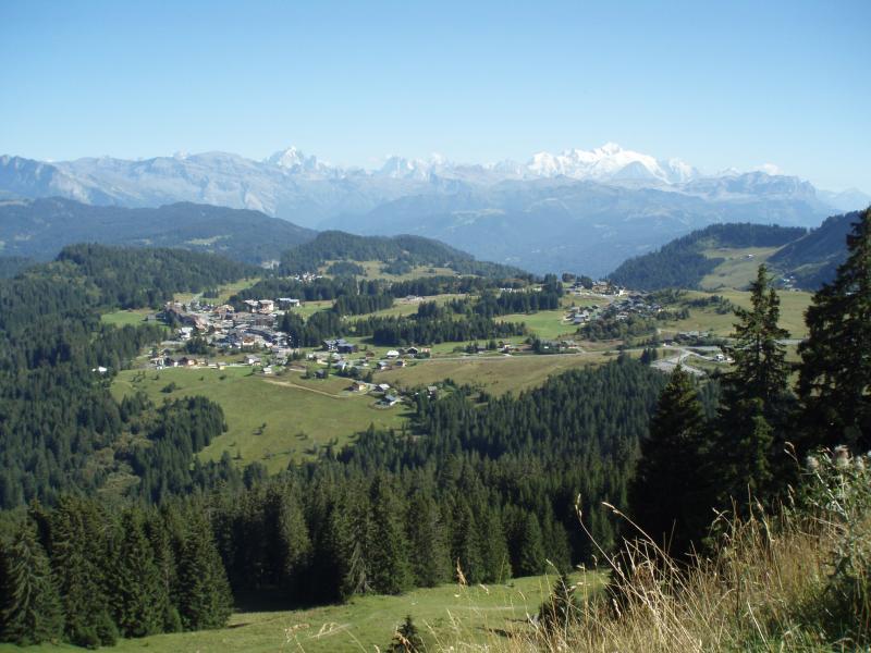 Other view Location Chalet 66858 Praz de Lys Sommand
