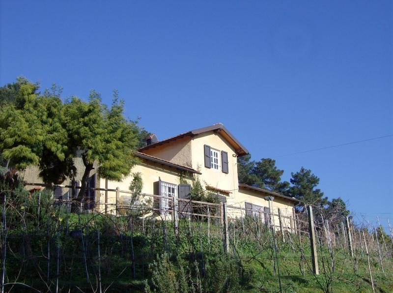 Outside view Location Apartment 70889 Viareggio