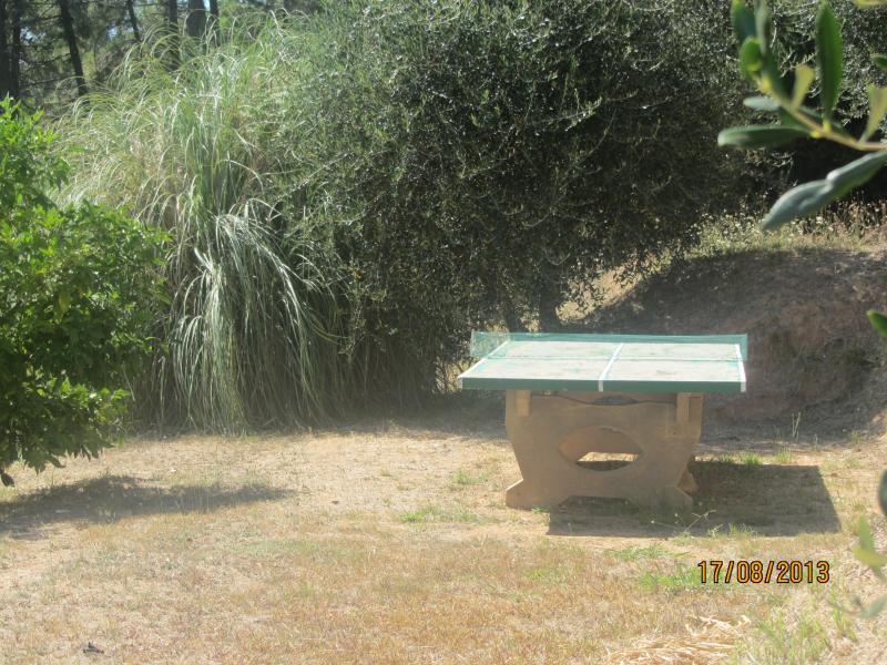 Garden Location Apartment 70889 Viareggio