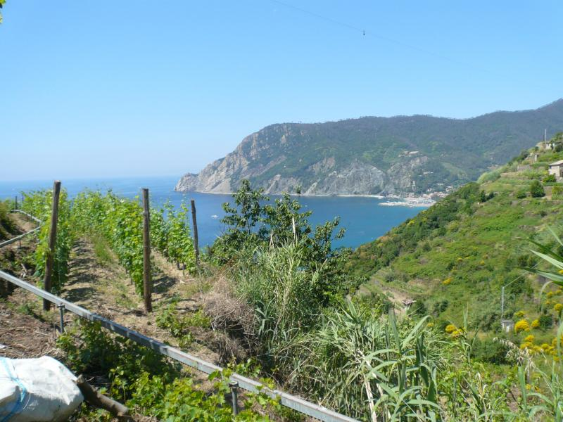 Other view Location Apartment 75601 Levanto
