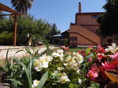 Garden Location Apartment 77894 Alghero