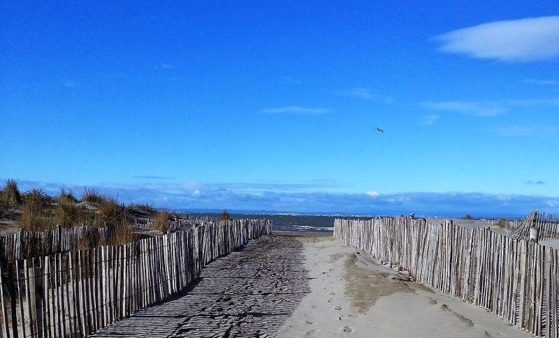 Beach Location Apartment 104513 Le Grau du Roi