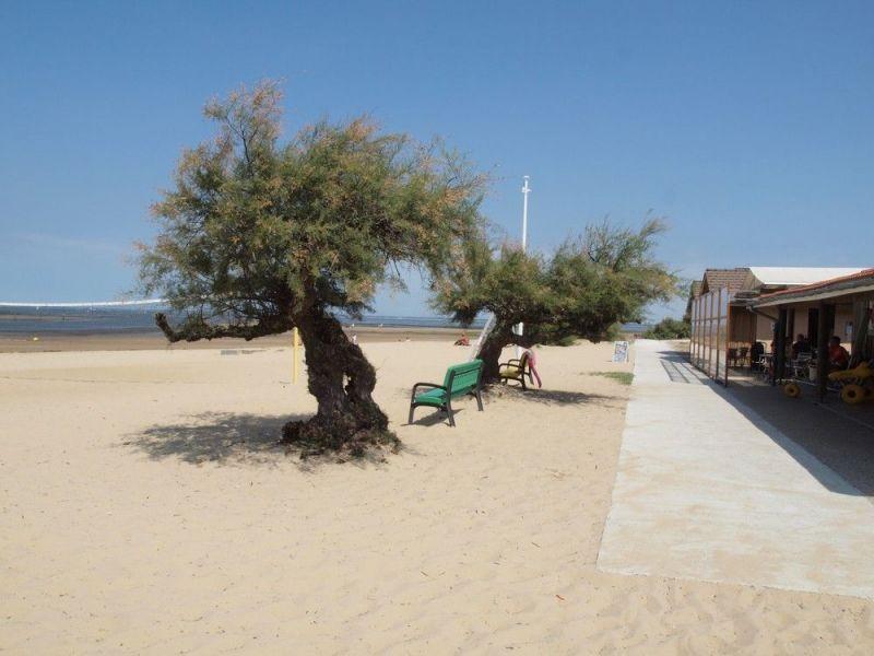 Beach Location House 110612 Arcachon