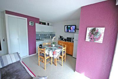 Sitting room Location Apartment 80256 Saint Lary Soulan