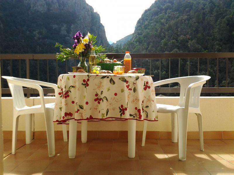 View from terrace Location Apartment 96364 Amélie-Les-Bains