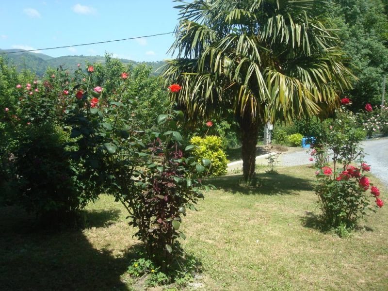 Garden Location Villa 93578 Grand Baie