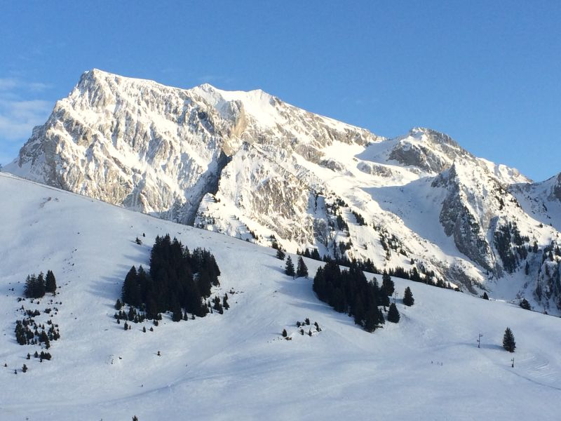 View from the balcony Location Apartment 112201 La Clusaz