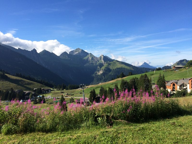 View from the property Location Apartment 112201 La Clusaz