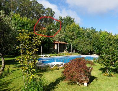 Location House 114714 Celorico de Basto