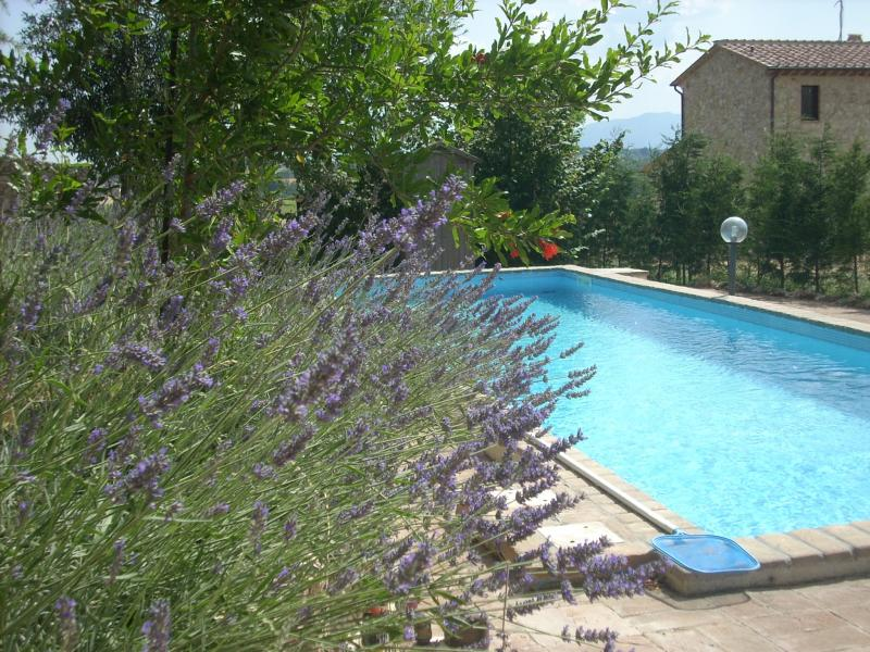 Swimming pool Location Villa 77711 Amelia