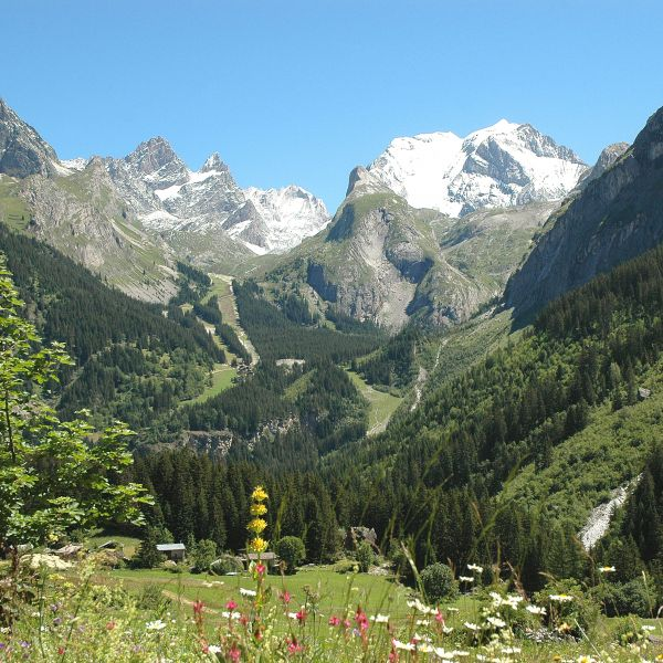Surroundings Location Apartment 93265 Pralognan la Vanoise