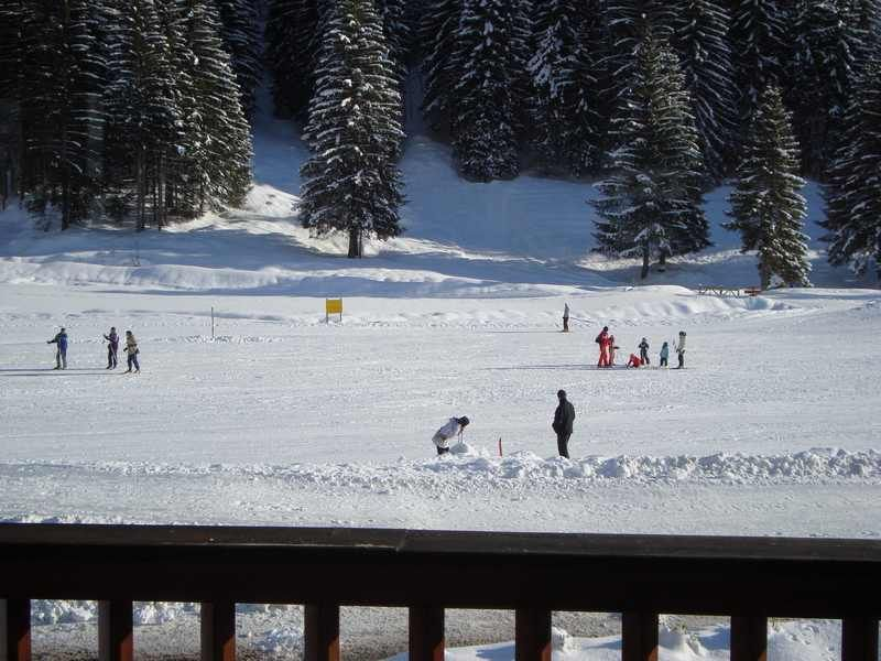 View from the property Location Chalet 110705 Le Grand Bornand