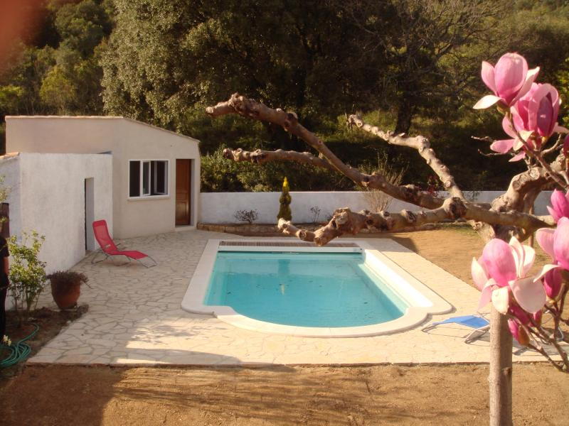 Swimming pool Location Self-catering property 69702 Uzès